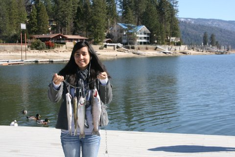 Guided fishing tours bass lake boat rentals for One day fishing license ca