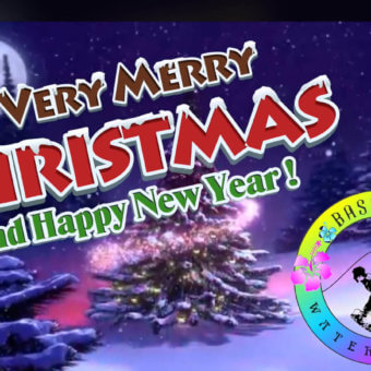 Merry Christmas and a Happy New Year from Bass Lake Watersports! 2017 – 2018